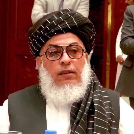 Rođen 1963., Stanikzai je 70-ih godina prošao vojnu obuku u Indiji. Stanikzai, koji je imao aktivnu ulogu u sovjetsko-afganistanskom ratu, jedno je od rijetkih imena u pokretu koje nije iz medrese odakle potječu talibani. Navodi se da Stanikzai, koji je bio zamjenik Ministarstva vanjskih poslova i zdravlja u talibanskoj administraciji, govori 5 jezika. Stanikzai je bio šef talibanskog političkog ureda od 2015-2019. Nakon 2019. godine bio je zamjenik političkog ureda.