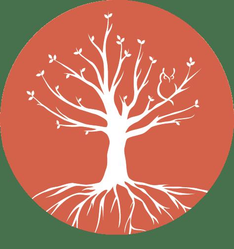 puur genezen door anna hoekstra