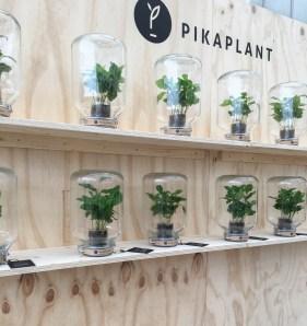 design nieuws terrarium puur styling interieur inspiratieblog