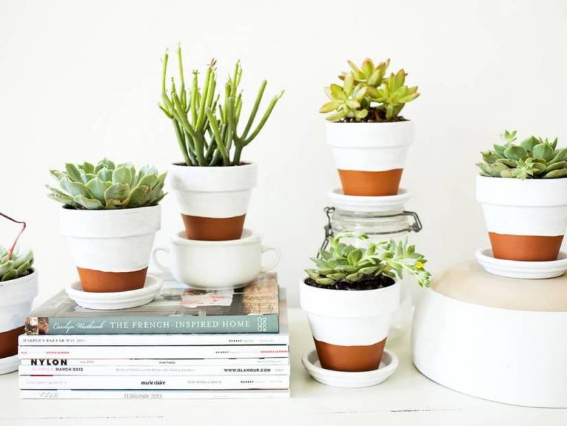 planten-potjes-groen-geluk-green-bubble-puurvangeluk