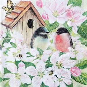 servetti linnut omenapuussa