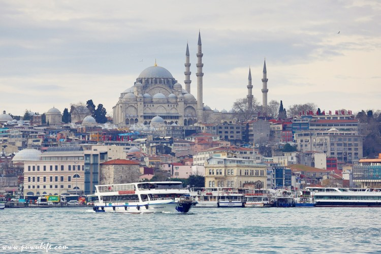 【土耳其】伊斯坦堡必遊!博斯普魯斯海峽遊船,左手是歐洲、右手是亞洲!