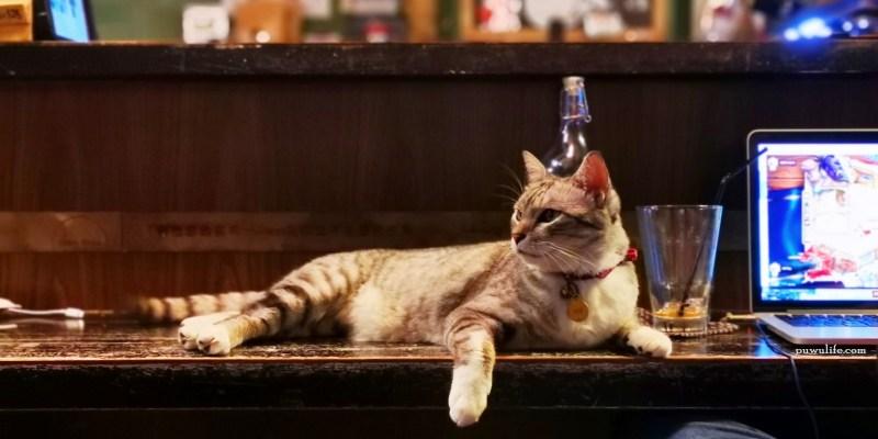 【鴉埠咖啡.Yaboo】大安區。永康商圈不限時.營業至深夜的貓咪咖啡館❤