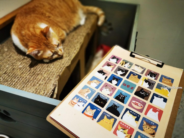 【貓藝家療癒咖啡屋】中山區。貓咪中途之家,用愛打造的浪貓天堂❤