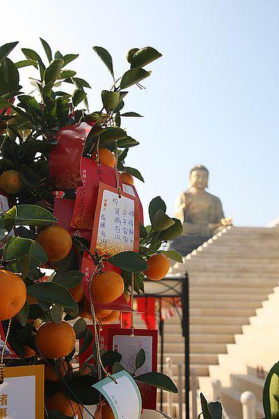 【高雄景點】佛陀紀念館。六合夜市