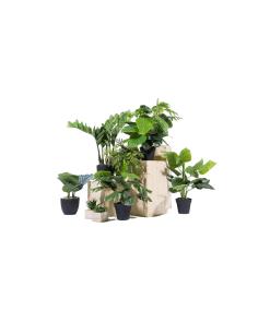 plantes artificielles en scène