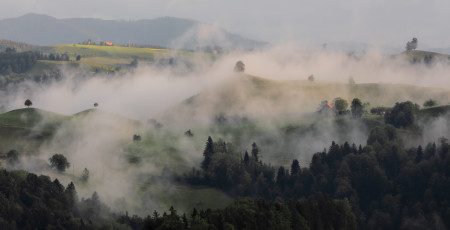 Witte Wieven amassing as fog on a hill