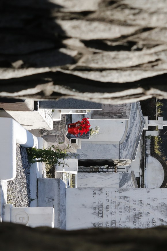 Lafayette Cemetery 2 Puzzle Box Horror images red flowers in graveyard