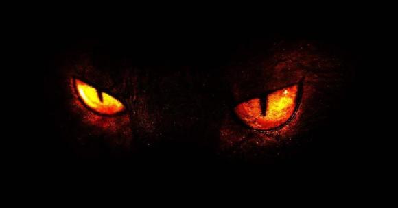 scary cat eyes
