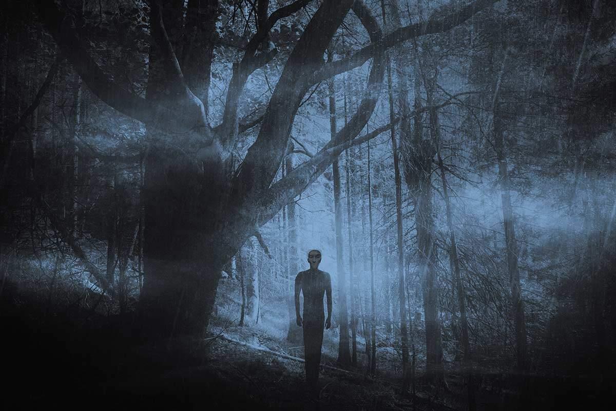 Walking Sam dark figure in the woods