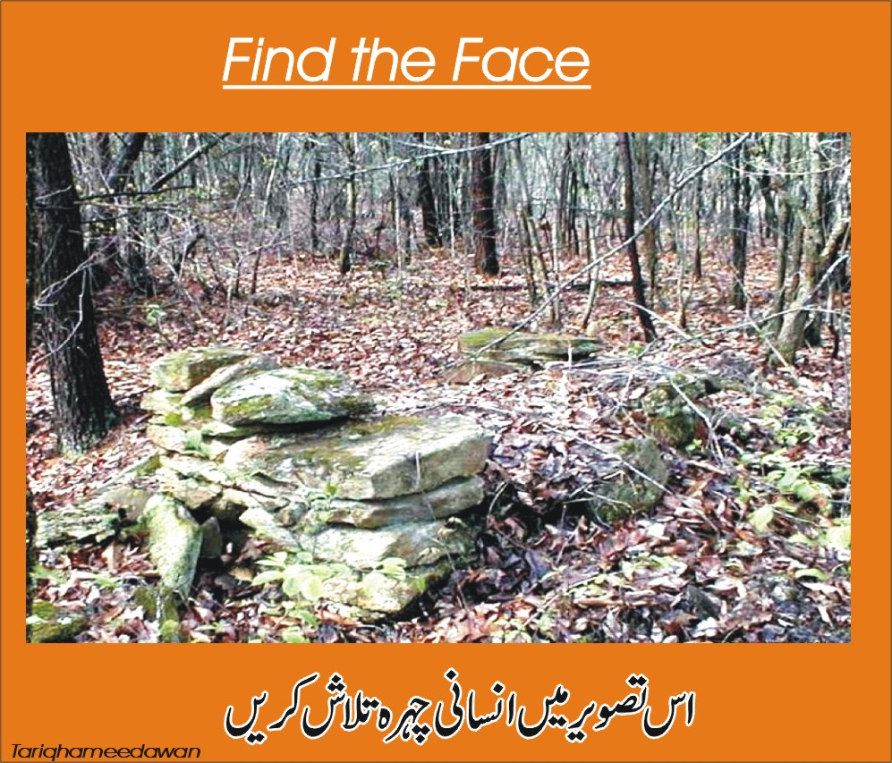 best picture puzzles image puzzle puzzlersworld com