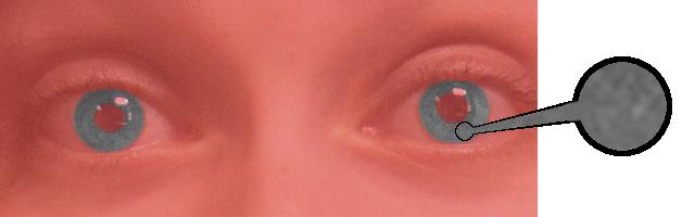 Grey Eyes