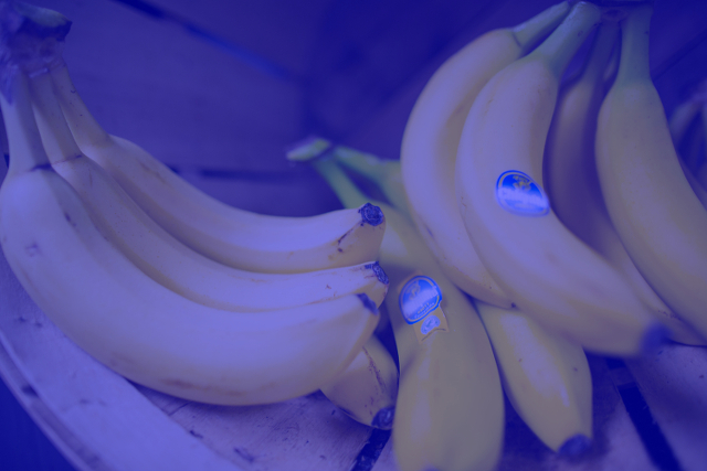 Banana Optical Illusion