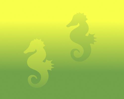 Seahorse Color Illusion