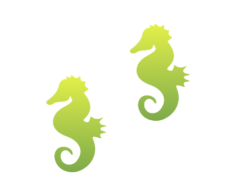 Seahorse Illusion Proof