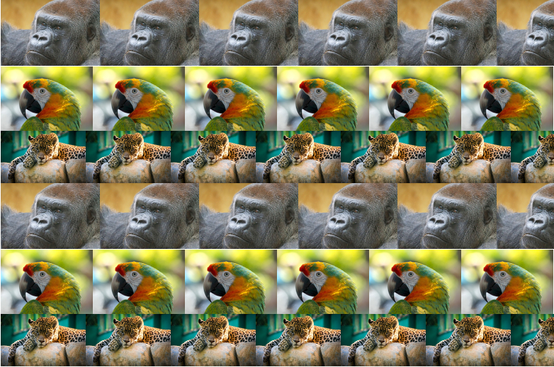 Stereograms