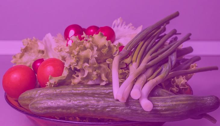 Lettuce Optical Illusion