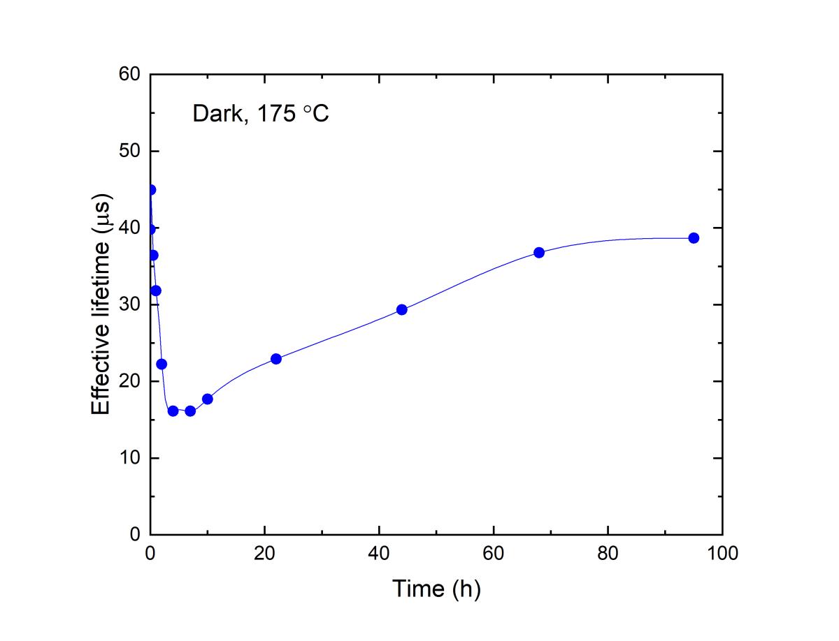 Figure 1 B.png