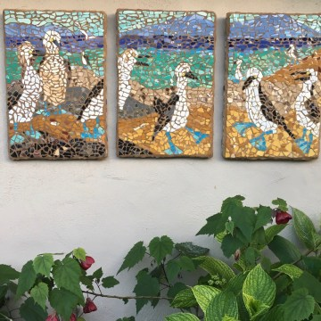 "Baja Blue Footed Boobies by Erika Perloff, Broken Plate Mosaic 24"" x 48"""