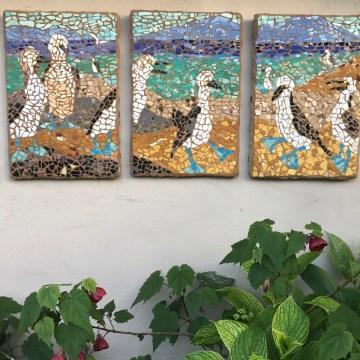 "Baja Blue Footed Boobies by Erika Perloff, Broken Plate Mosaic 24"" x 48"""