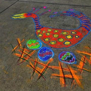 Sidewalk Bird on Nest by Linda Cover, Chalk