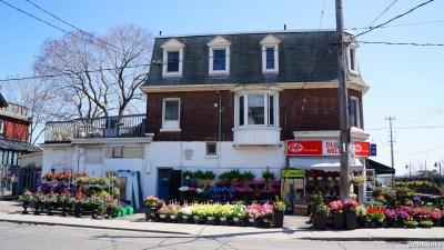 Springhurst Ave (59)