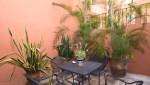 Casa_Carolina_Puerto_Vallarta_Real_estate_26