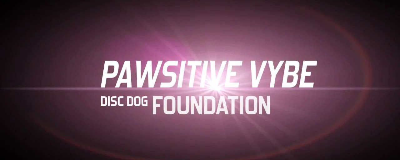 Steal This Class! | Pawsitive Vybe Disc Dog Foundation & Jamming