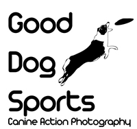 Good Dog Sports Photography