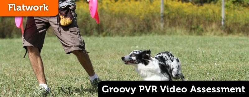 Groovy PVR Assessment