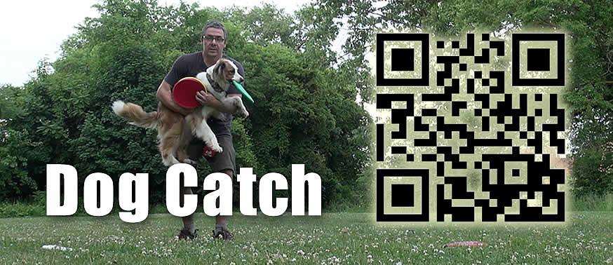 dog-catch-moo