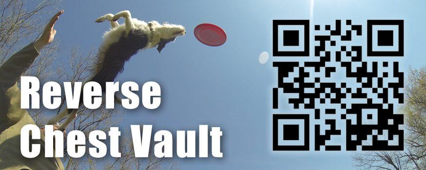 Reverse Chest Vault