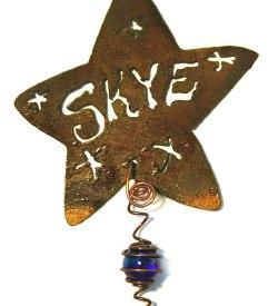 Pet Memorial Star