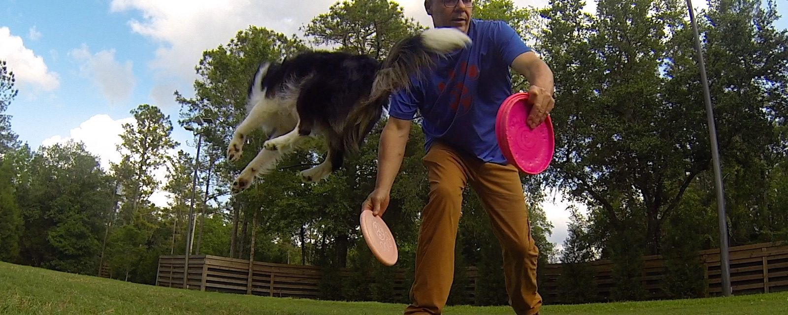 Tao of Disc Dog | There is No Faking Flow