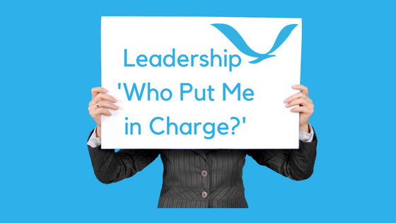 Leadership – Who put me in charge?
