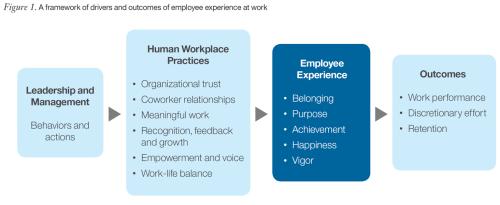 Framework employee experience
