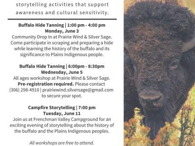 Buffalo Hide Tanning Workshops in Val Marie