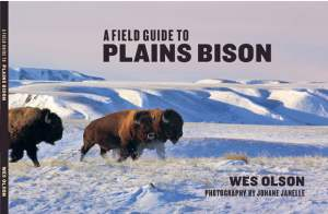 Field Guide to Plains Bison