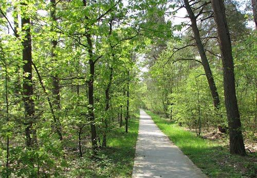 Afbeelding van het Eibertjes pad van Vierhouten naar Nunspeet.