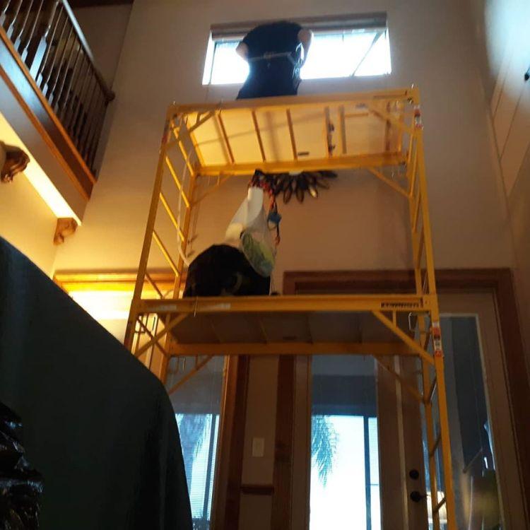 Installing window film on scaffolding