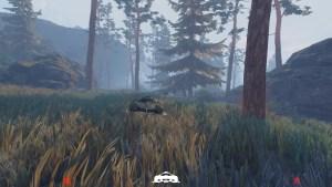 Un passage en forêt à oublier...