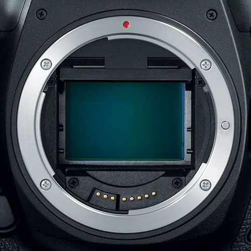 Is RED about to announce the primary RF mount video digicam?