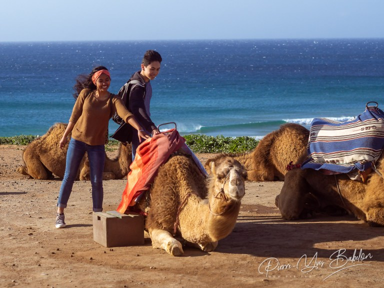 A couple of young people with camels