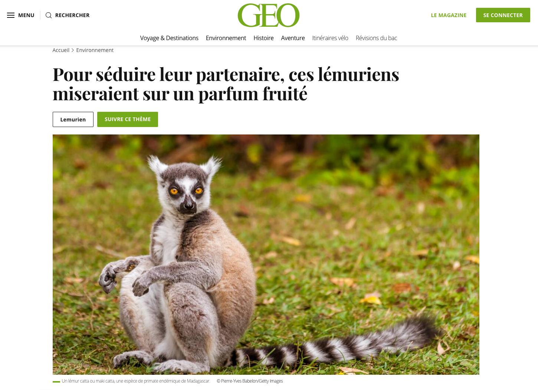 Geo article lemuriens