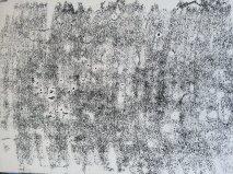 ink texture IP 8