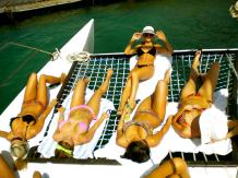 Brooke Tessmacher bikini babes
