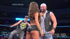 Brooke Tessmacher girls gotta booty animated gif Bully Ray