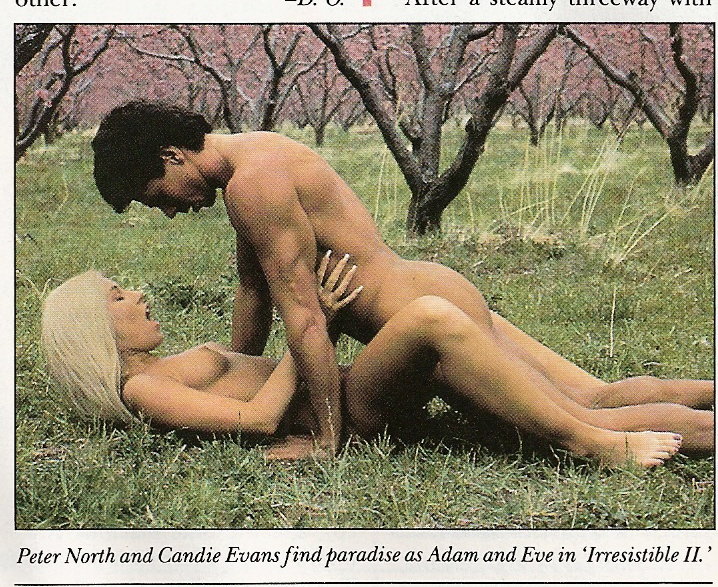 the search for adam and eve porn