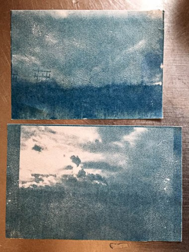 Cyanotypes drying