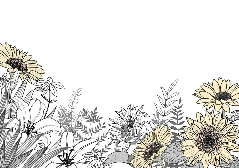 ボタニカル調のひまわりのイラストフレーム枠(横バージョン)